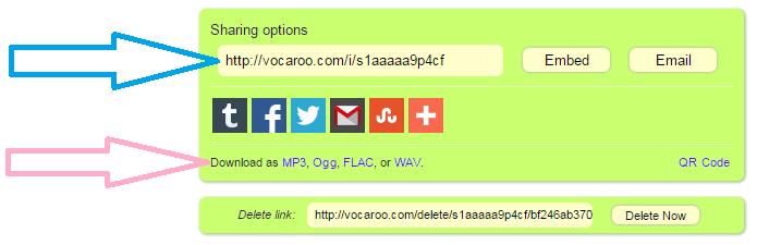 Example_vocaroo