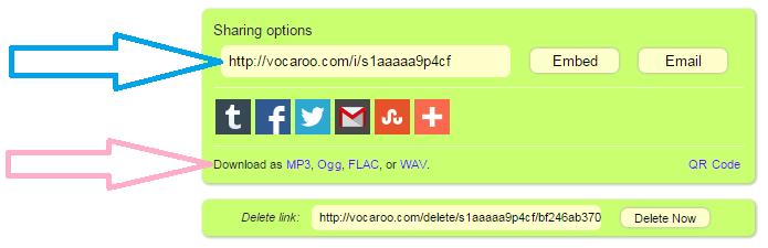 Example_vocaroo